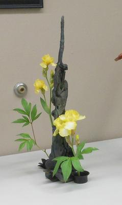 Yellow iris on display at show.