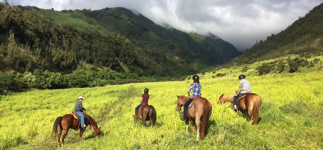 central maui s horseback riding experience come explore with us