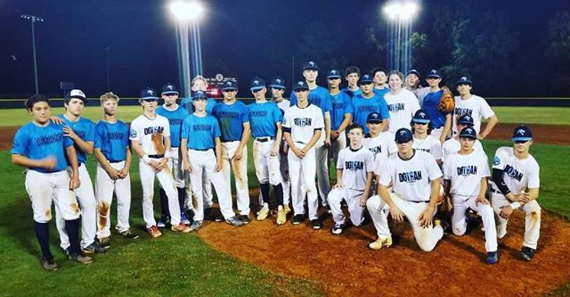 Fall Baseball League