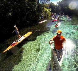 Things to do in Tampa Bay, paddle boarding