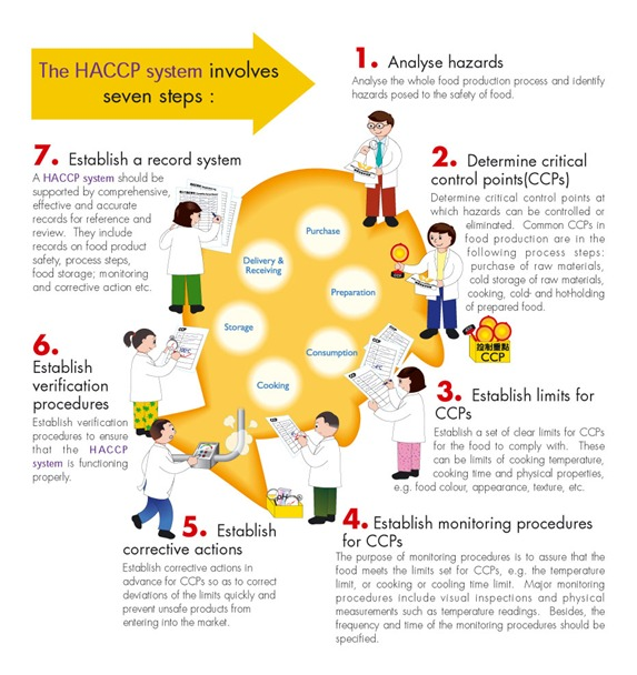 haccp guidelines for food safety