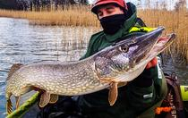 Fishing guides in Finland