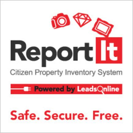 Report IT Citizen Property Inventory System Logo