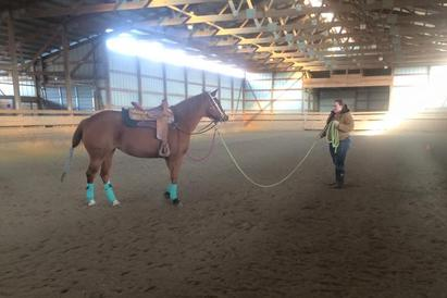 Triple M Stable, Council Bluffs, IA- Horse Training