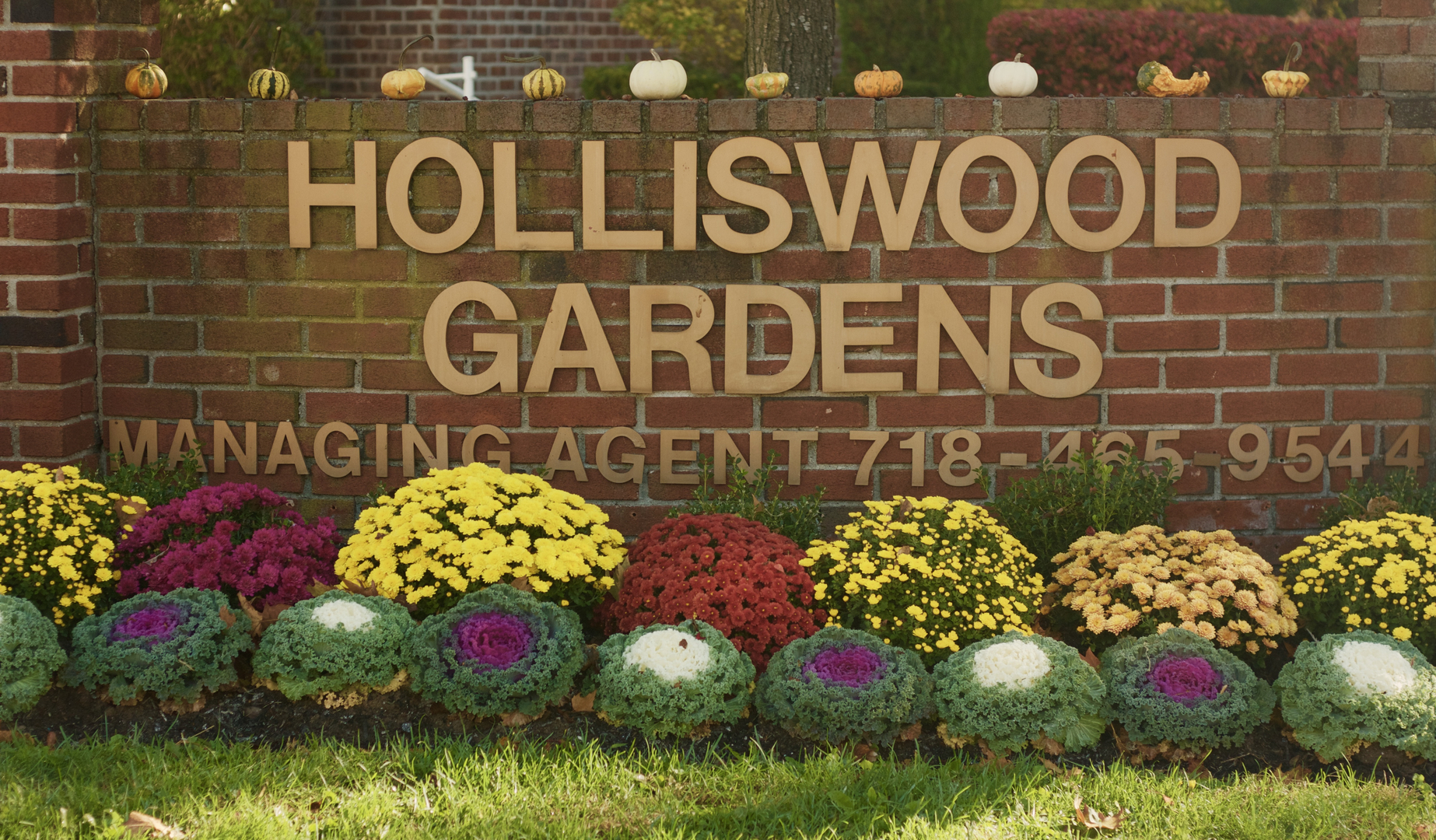 Holliswood Owners Corp.