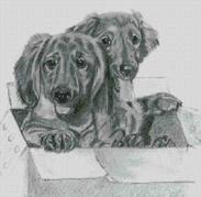Cross Stitch Chart of Dachshunds at play original artwork by Nick Clark