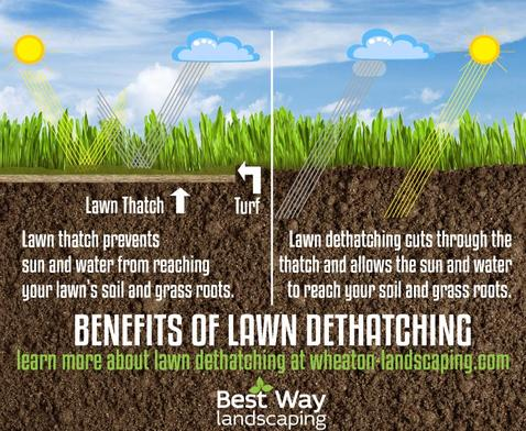 RELIABLE LAWN AERATION AND CARE IN LAS VEGAS NV