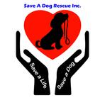 Save a Dog Rescue