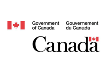 government of canada consultant