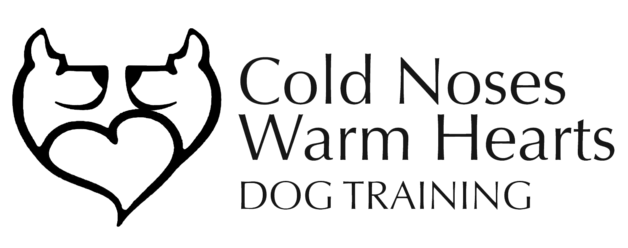 Dog Training Classes Therapy Dog Classes Cold Noses