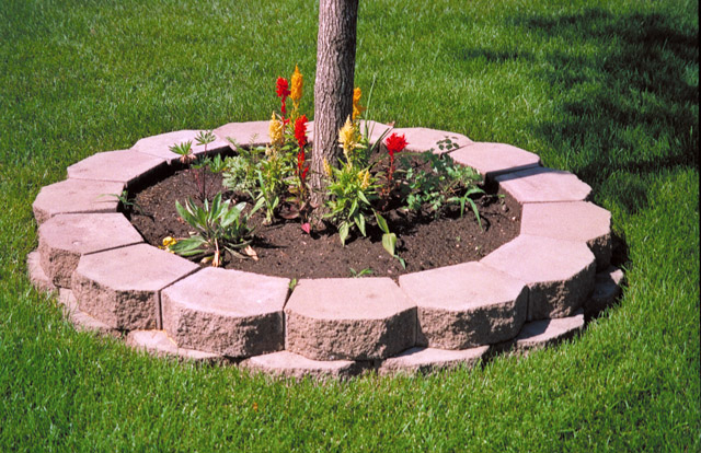 Как сделать клумбу из бетона