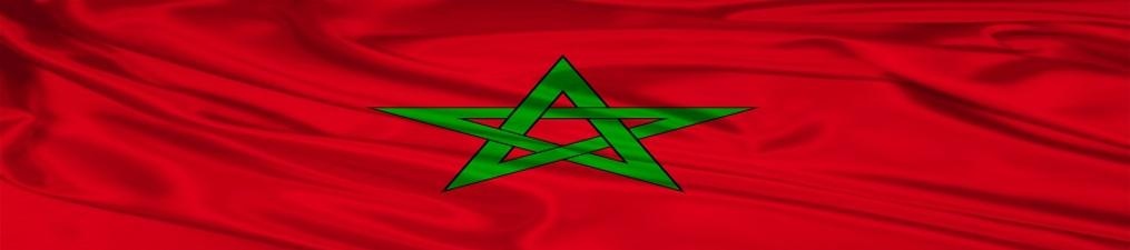 flag of morocco, red flag with green star in the middle