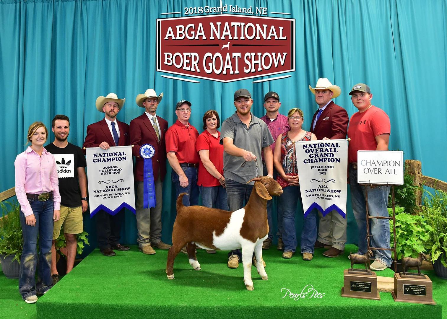 Teel Show Goats - Show Goats for Sale, Boer Goat Breeders, Boer Goat