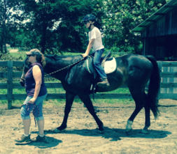 Colby's Army photo of the bay appaloosa horse Quincy in a therapeutic riding lesson