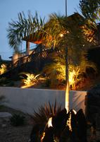 Landscape Design San Diego PacifiCoastal Design