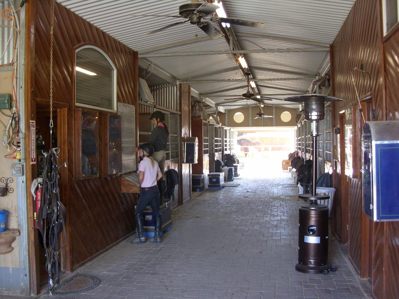Horse Boarding Facilities, A Hunter Jumper Horse Boarding & Training