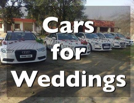car on rent for wedding