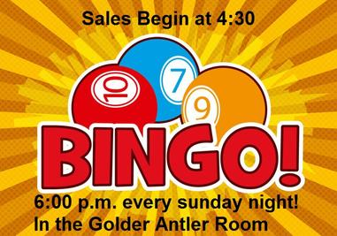 Bingo Every Sunday!