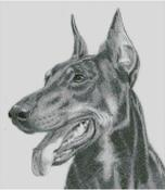 Cross Stitch Chart of a Doberman original artwork by Nick Clark