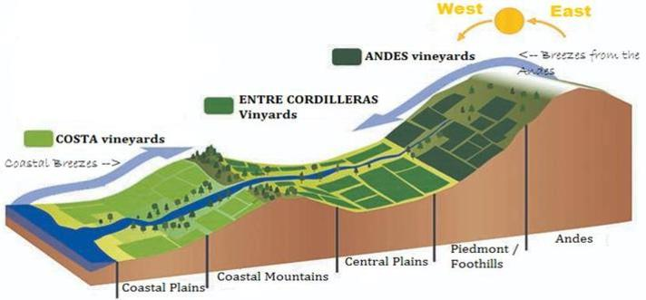 Cross Sectional Map of Chile, showing three types of climate for viticulture: Coastal, Between mountains and Andes