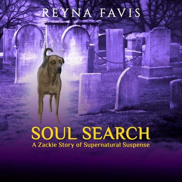 SOUL SEARCH Audiobook