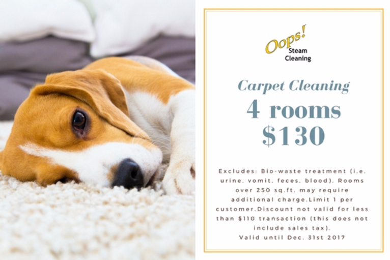 carpet cleaning coupon for 4 rooms, coupon linked to carpet cleaning page