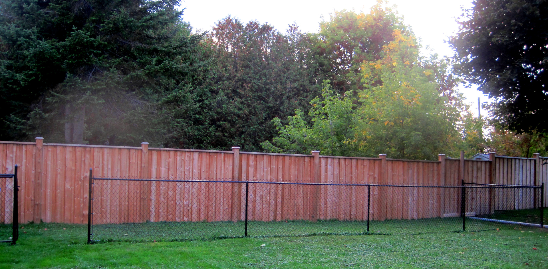 fences chain link fence rod iron fence