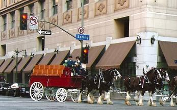 Tv commercials miller lite commercial featuring covell ranch horses filmed at 7th spring sts in downtown los angeles aloadofball Images