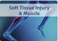 Soft Tissue Injury and Muscle