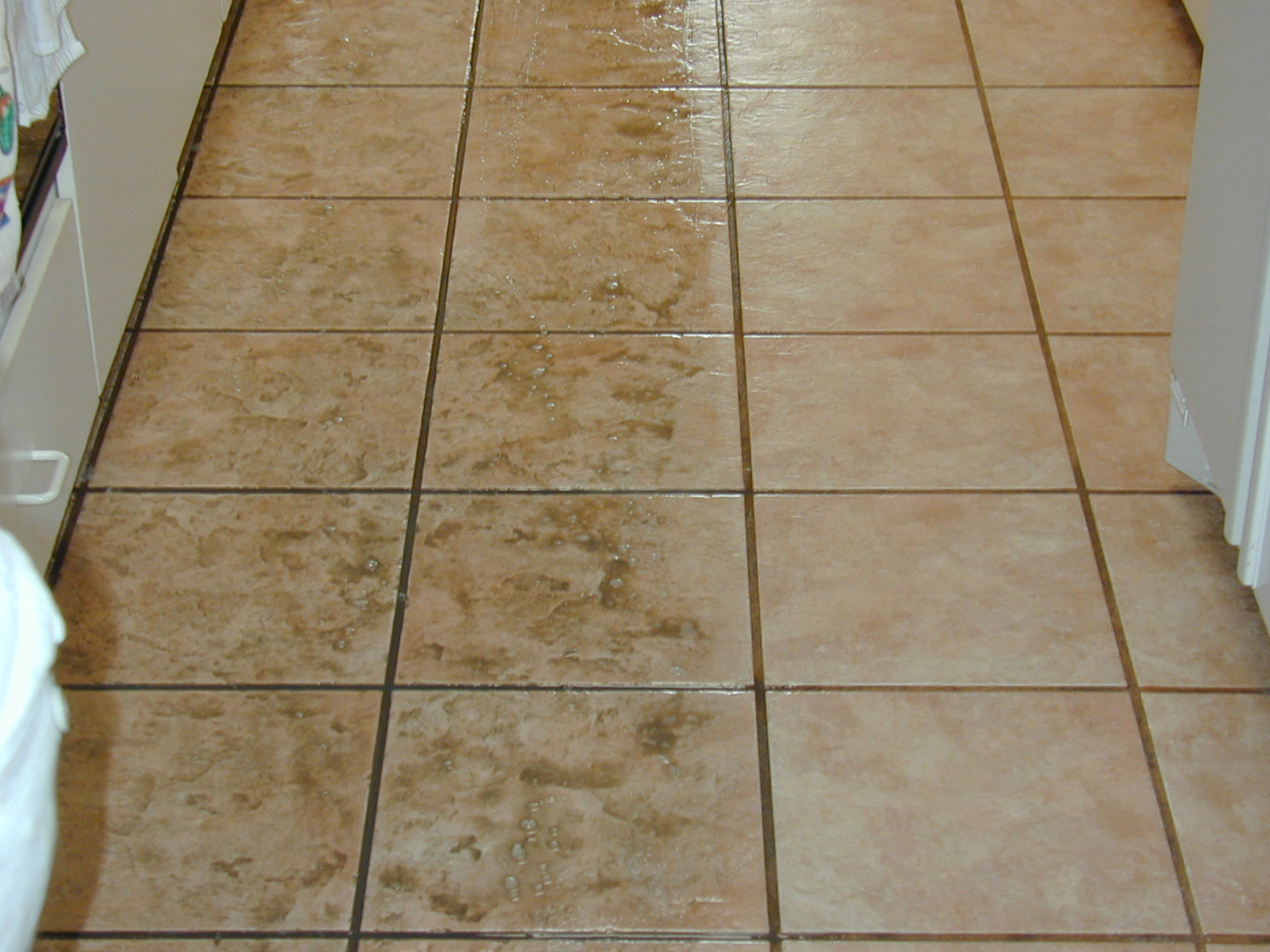 Tile and grout cleaningsealing saltillo cleaning and sealing restorations dailygadgetfo Image collections