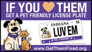 Spay-Neuter Services of Indiana | Pet friendly license plate