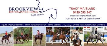 Brookview Performance Horses