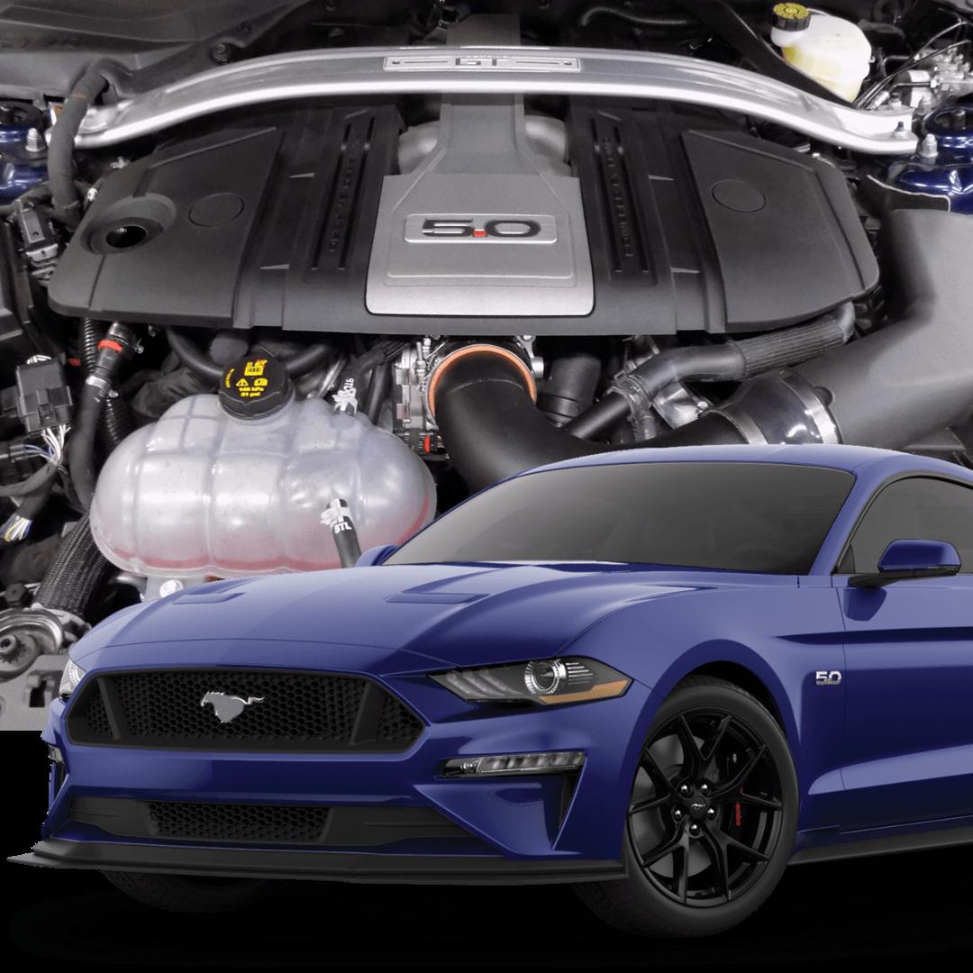 Automotive Customization And Service