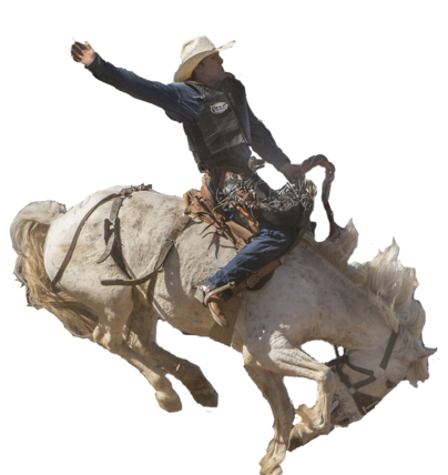 Home La Grange Rodeo Association