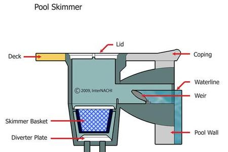 Pool and spa inspection Swimming pool water flow diagram