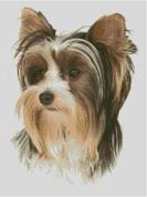 Cross Stitch Chart of a Yorkshire Terrier