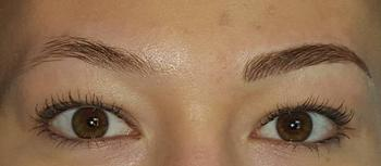 permanent makeup eyebrows louisville