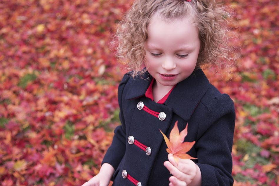 norwell family photographers