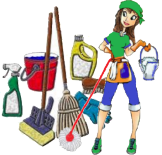 REGULAR CLEANING SERVICES FROM MGM HOUSE HOLD SERVICES