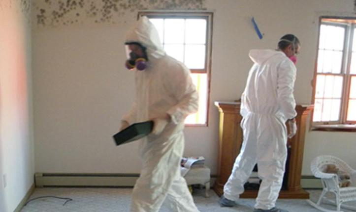 Professional Bed Bug Prep Cleaning Service and Cost Omaha NE | Price Cleaning Services Omaha