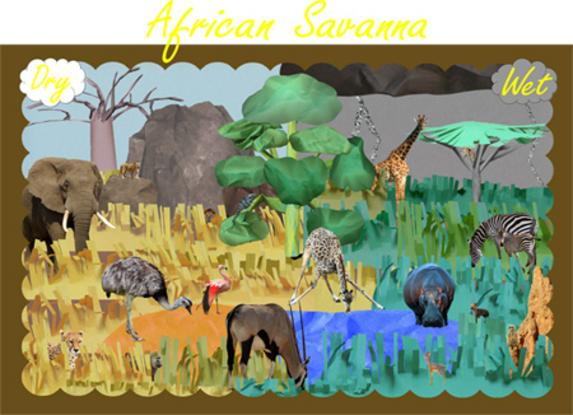 Savanna Classroom Museum