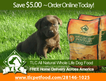 Chocolate Lab Dog Food