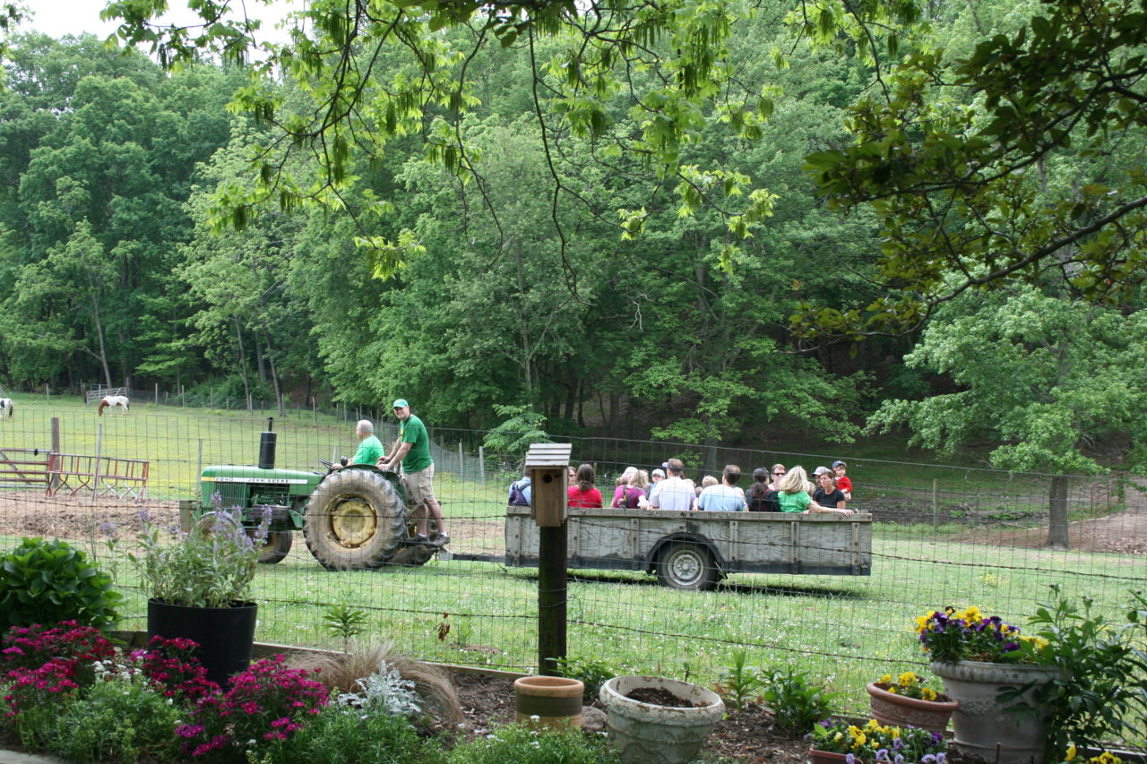 The Family Farm on Avent Ferry