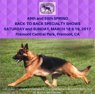 Diablo Valley German Shepherd Dog Club 2017 Conformation Premium