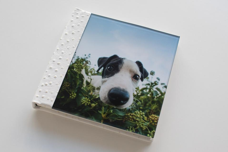 Acrylic cover pet portrait album