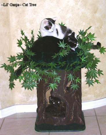 Lil Ganja Cat Tree