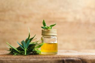 cbd oil uses and health benefits blog image