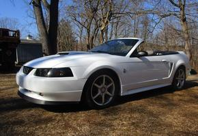1999 35th Anniversary Mustang Convertible
