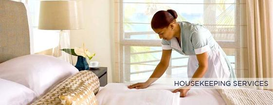 HOUSEKEEPING SERVICES in Edinburg Mission McAllen TEXAS