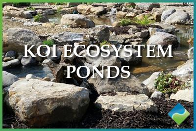 Aquatic Edge Pond & Landscape Solutions - Koi Ecosystem Ponds